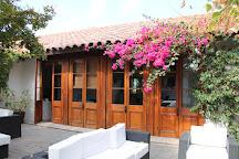Vina Undurraga, Talagante, Chile