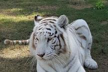 Abu Dhabi Wildlife Centre, Abu Dhabi, United Arab Emirates