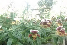 Jardin Botanico las Orquideas, Puyo, Ecuador