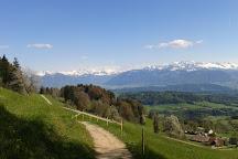 Bachtelturm, Hinwil, Switzerland
