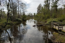 Phinizy Swamp Nature Park, Augusta, United States