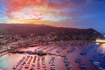 Catalina Expeditions  Tours, Avalon, United States