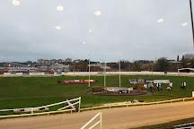 Mullingar Greyhound Stadium, Mullingar, Ireland