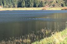 Pitt Polder Ecological Reserve, Pitt Meadows, Canada