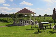 Wijngaard de Amsteltuin, Amstelveen, The Netherlands