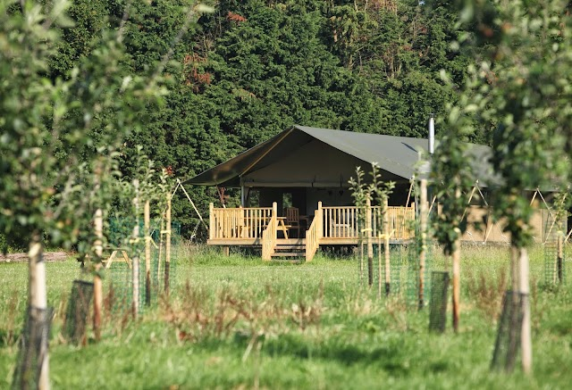 Wild Luxury - The Norfolk Glamping Company