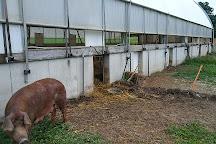 Rodale Institute Farm, Kutztown, United States