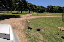 Franklin Drive Thru Safari, Franklin, United States