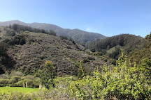 San Pedro Valley Park, Pacifica, United States