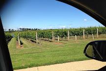 Wine Time Tours, Sorrento, Australia