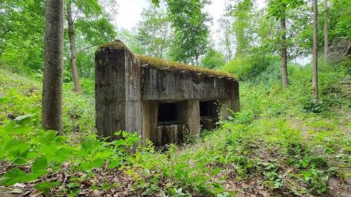 Molotovo linijos bunkeris