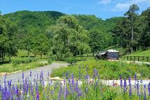 Walnut Hollow Ranch, Hayesville, United States