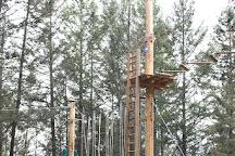WildPlay Element Parks Kelowna, Kelowna, Canada