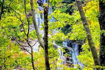 Cascata dell'Acquacheta, San Benedetto in Alpe, Italy
