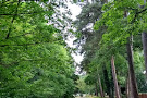 Malvern and Brueton Park