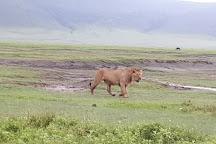 Ernest Magic Tours & Safaris, Arusha, Tanzania