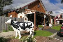 Candy Cow, Cowaramup, Australia
