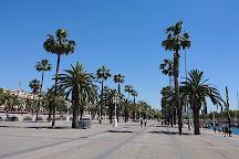 La Parella, Barcelona, Spain