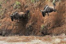 Bencia Africa Adventure & Safaris, Nairobi, Kenya