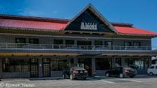 Hotel Amore Donga Gali nathia-gali