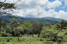 San Jorge - Oficina Botanical Garden, Ibague, Colombia