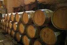Domaine Treloar Vineyard and Winery, Trouillas, France