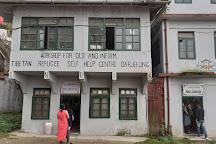 Tibetan Refugee Self Help Center, Darjeeling, India