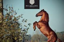 Centro Ippico Duca Dell'Adua, Robecco sul Naviglio, Italy