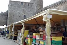 Fortezza di Montalcino, Montalcino, Italy