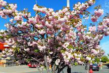 Liberty Tree Mall, Danvers, United States