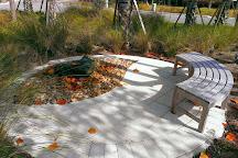 Conservancy of Southwest Florida, Naples, United States
