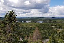 Orsa Gronklitt Bjornpark, Orsa, Sweden