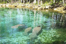 Three Sisters Springs, Crystal River, United States