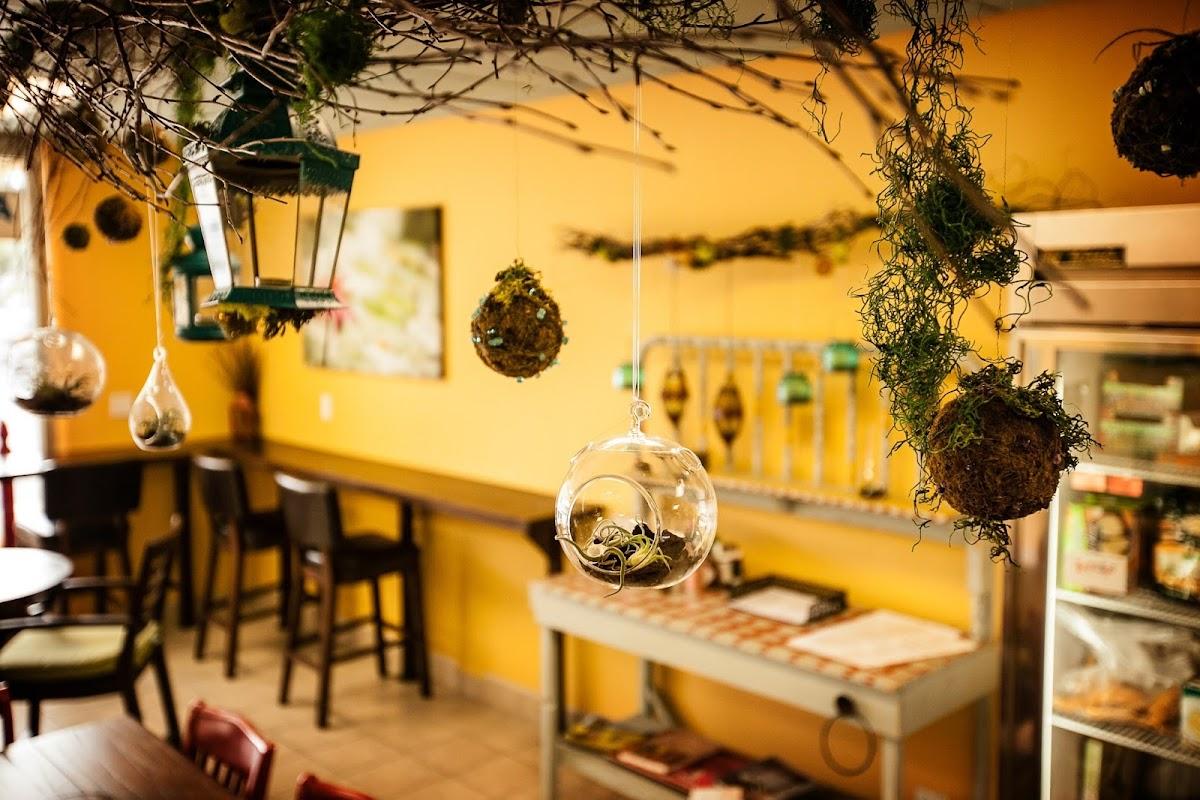 Healthy Creations Cafe 376 N El Camino Real Image