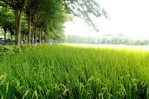 Bada Forest Paradise, Zhutian, Taiwan