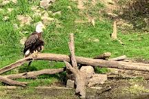Lee G. Simmons Conservation Park and Wildlife Safari, Ashland, United States