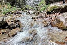 Canionul Șapte Scări, Timisul de Jos, Romania