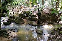 Lentang Forest Recretional Park, Bentong, Malaysia