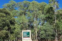 Mount Buffalo National Park, Victoria, Australia
