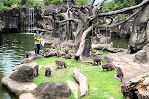 Taipei Zoo, Wenshan, Taiwan