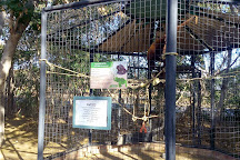 Zoologico de Paraguana, Punto Fijo, Venezuela