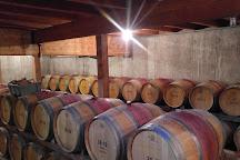 Pellegrini Vineyards, Cutchogue, United States