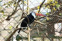 Parque Ecologico Eugenio Walter, Boituva, Brazil