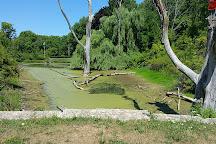 Webster Park, Webster, United States