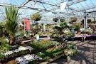 Hetland Garden Centre