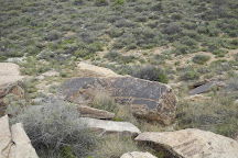 Newspaper Rock State Historic Monument, Petrified Forest National Park, United States