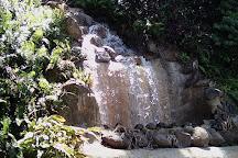 Parque Forestal La Marquesa, Guaynabo, Puerto Rico