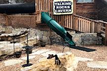 Talking Rocks Cavern, Branson West, United States