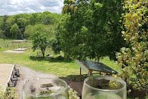 Treehouse Vineyards, Monroe, United States
