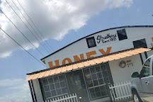 Struthers' Honey, Lake Wales, United States